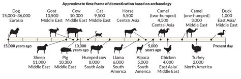 when were dogs domesticated viewing science feeds world professional news