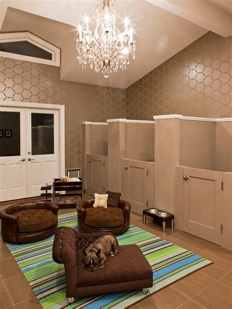 Pet Room Ideas | pets at home designing dog rooms pawsh magazine