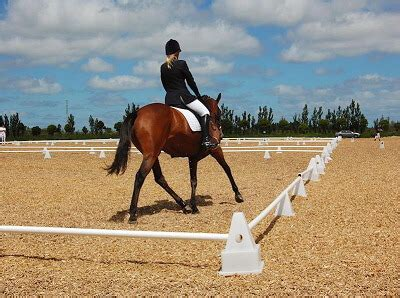 horse arena surfaces equestrian surfaces  zealand