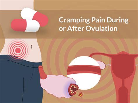 cramping pain    ovulation   pregnant