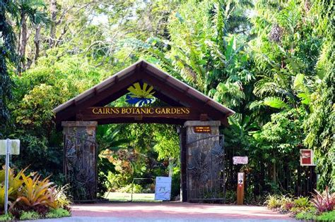 Cairns Botanic Gardens Tropical Plants And Flowers Picture Of Cairns Botanical Gardens Cairns Region Tripadvisor