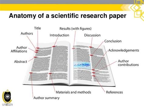 anatomy of a research paper scientific writing