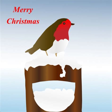 christmas robin card free stock photo public domain pictures