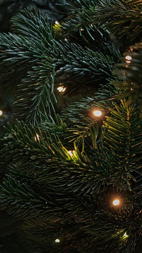 christmas tree decoration wallpapers hd wallpapers id