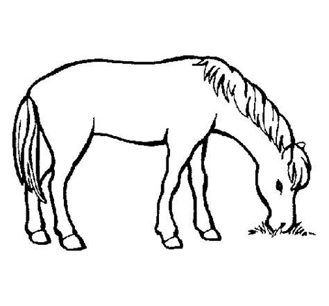dibujos para colorear de caballos free coloring pages of caballo para colorear