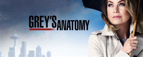 The Of Greys by 13 Predictions For Season 13 Of Grey S Anatomy