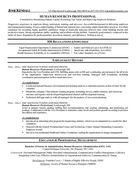 professional resume exles free best business template