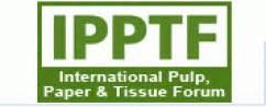 pulp paper aaf international international pulp paper tissue forum 2007