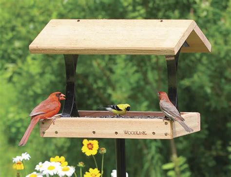 top 10 best bird feeders design for me for the yard