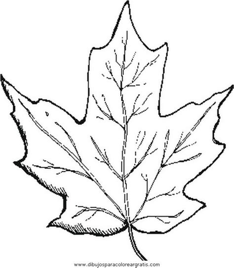 toronto maple leafs coloring pages coloring pages