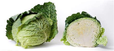 broccolo come cucinarlo il cavolo ciboecibo