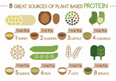 p protein in plants the best sources of protein awesome and protein