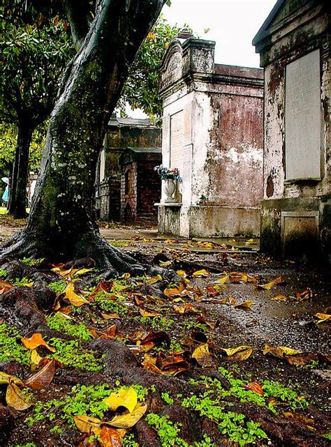 Garden Of Lafayette New Orleans Cemeteries And New Orleans Louisiana On