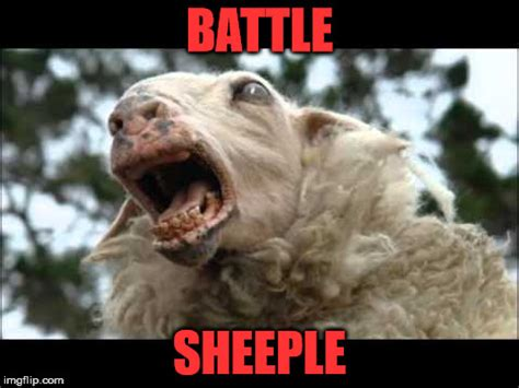 Sheeple Meme - battle sheeple imgflip