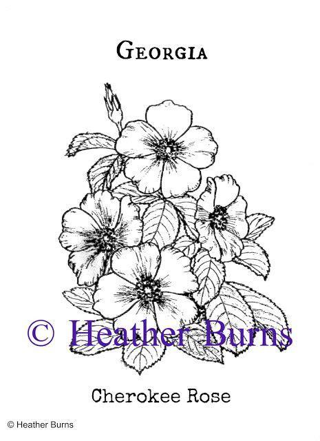 cherokee rose tattoos state flower