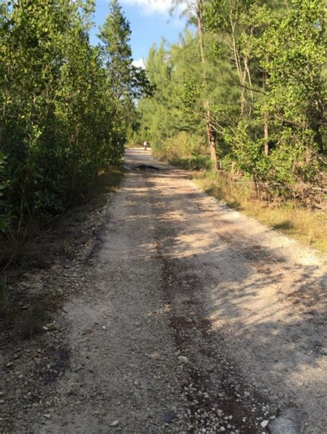 trail finding my way home in the colorado rockies books the 10 best bike trails in florida to see a ghost
