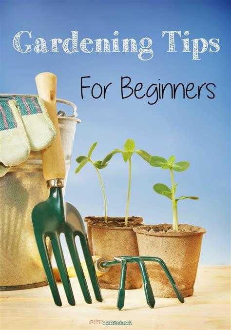 gardening tips  beginners