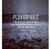 Pics Photos  Pluviophile