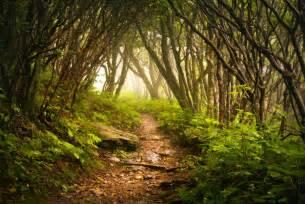 Hiking Trails Appalachian Mountains Hiking Trail