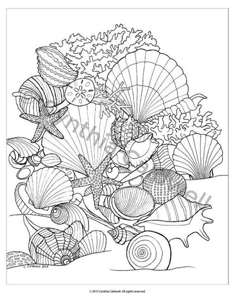 coloring pages for adults beach 17 best ideas about beach coloring pages on pinterest