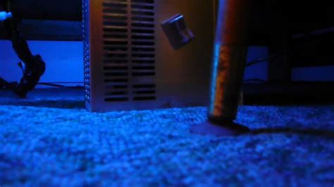 neon blue bedroom neon blue bedroom www imgkid com the image kid has it
