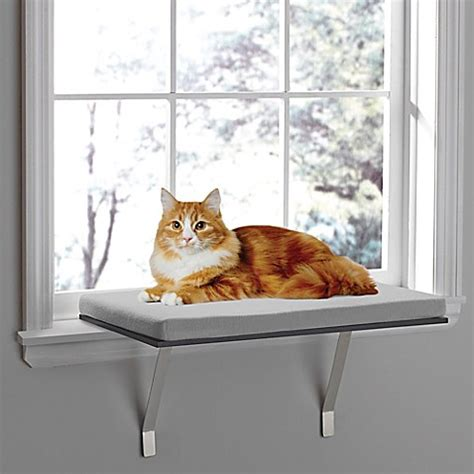 cat window bed pawslife deluxe window cat perch www bedbathandbeyond com