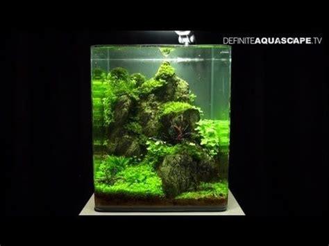 images  aquascapes  pinterest cichlids