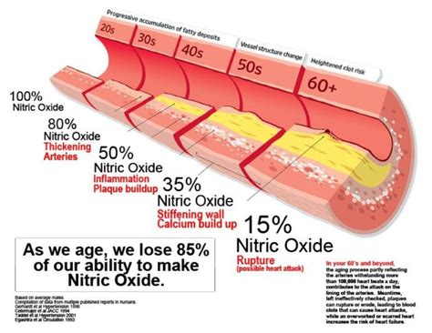 supplement nitric oxide should you take nitric oxide supplements or not