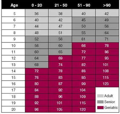 dogs age image gallery how dogs age chart