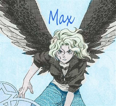 maximum ride maximum ride our images maximum ride hd wallpaper and