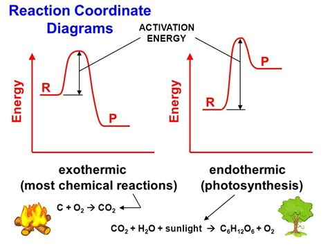 energy reaction coordinate diagram honors chemistry unit 2 matter and energy ppt