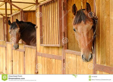 pferde stall pferde im stall lizenzfreie stockfotos bild 18709308