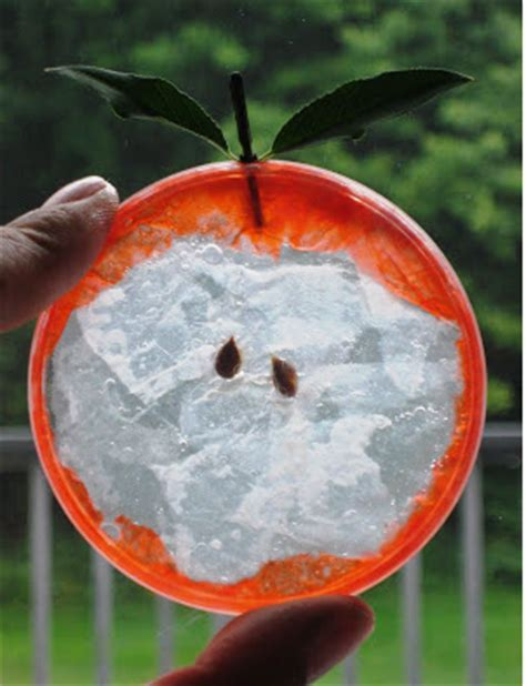 Plastik Bentuk Buah cara membuat kerajinan tangan bentuk buah buahan dari