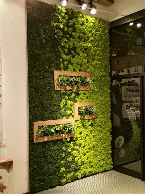Home Living Wall inspiration moss wall living garden therapy