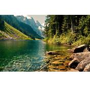 Beautiful Forest Lake HD Wallpapers
