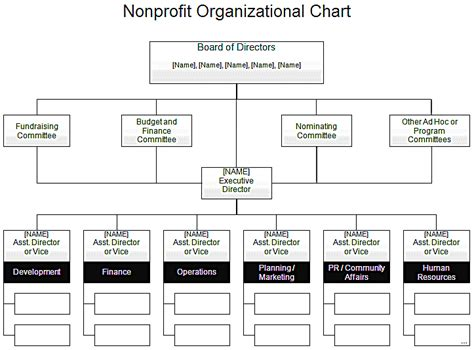 board of directors organizational chart template choice