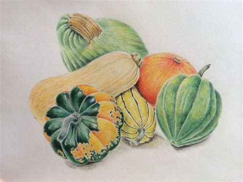 Drawing Vegetables by Vegetable Pencil Drawing Www Pixshark Images