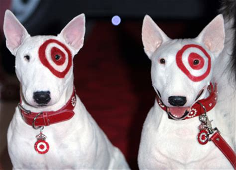 target breed target mascot breed