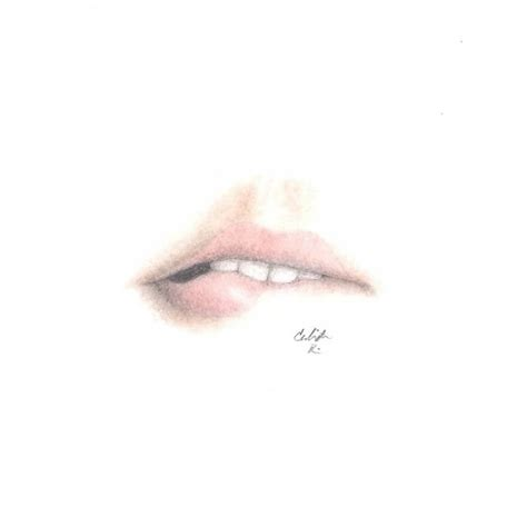 pencil drawings of lip biting www imgkid com the image