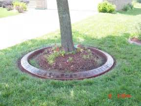 landscaping around trees images