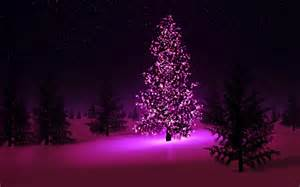 Merry christmas lights black tree fir pink hd wallpaper