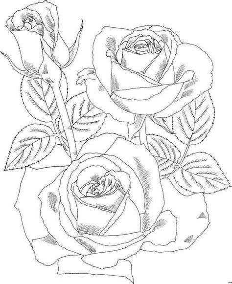 Imagenes De Rosas Hermosas Para Colorear | dibujos de rosas hermosas para colorear im 225 genes para pintar