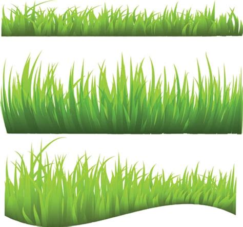 grass template green grass vector templates