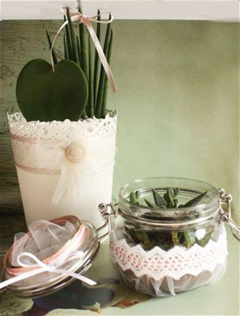 piante grasse in vaso di vetro 17 migliori idee su composizioni di piante grasse su