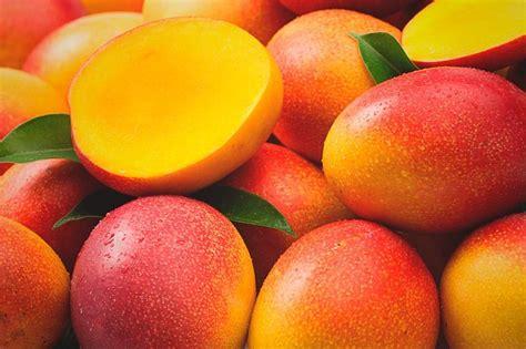 Mango 85 El 191 el mango engorda