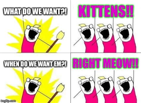 What Do We Want Meme Generator - what do we want meme imgflip