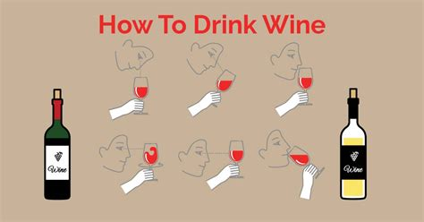 how to drink wine learn the basics of drinking wine
