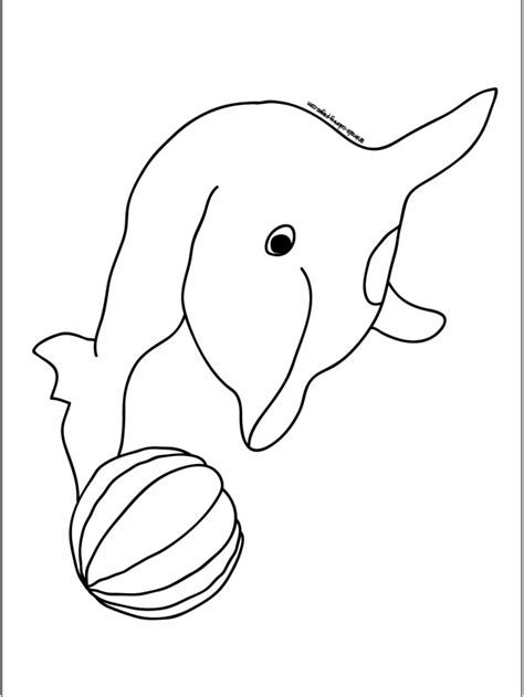 real animal coloring pages coloring pages