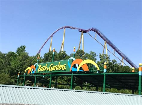 Busch Gardens Reviews by 365 Best Images About Busch Gardens Williamsburg On