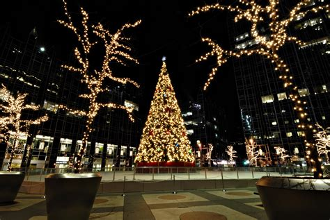 merry christmas eve tree images pictures  graphics